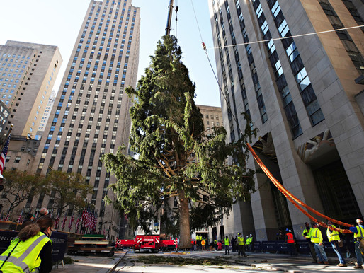 Rockefeller Christmas Tree returns, but after a rough ride