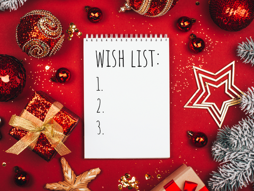 Practical Holiday Shopping List: Must-buy Amazon items