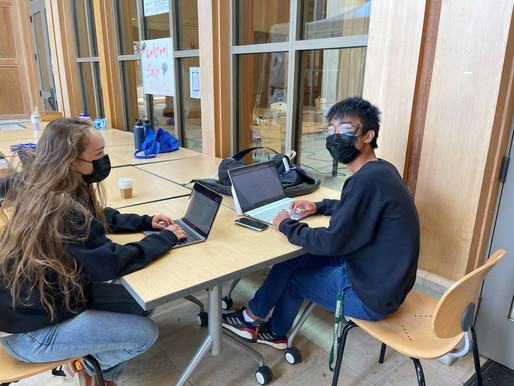 Behind the veil: the makings of college essays