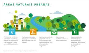 Como fortalecer as cidades por meio das Soluções Baseadas na Natureza (SBN)