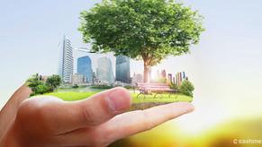 Apontamentos sobre as cidades sustentáveis