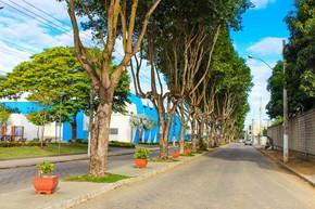Cidades mais verdes, cidades melhores