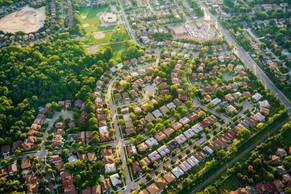 As cidades devem pensar nas árvores