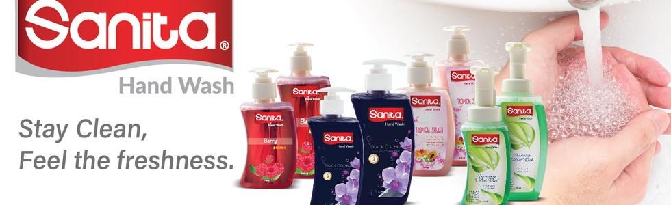 Sanita Hand Wash Banner - 1-01.jpg