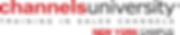Logo Channels University - New York Camp