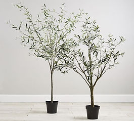 faux-potted-olive-trees-o.jpeg