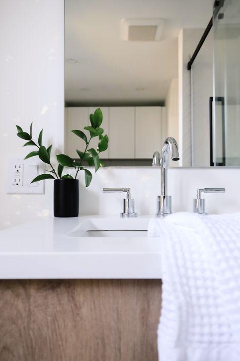 Main Bathroom Reno