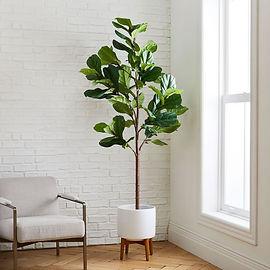 7-faux-fiddle-leaf-fig-tree-wide-mid-cen