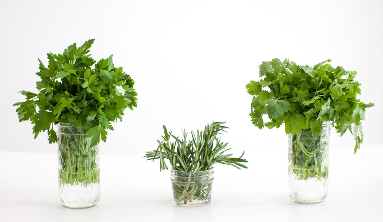 S11-HerbsIMG_0011.jpg