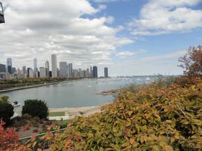 Exploring Chicago with the grandchildren