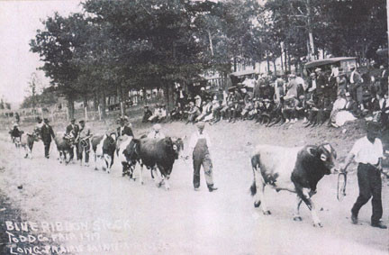 Men showed their blue-ribbon stock in the 1917 Todd County Fair which predated 4-H's arrival in the county by two years.