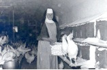 Nun with Turkey