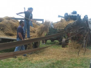 Neighbors near Lynd come together and get the threshing machine fired up once a year. The tradition was started by Mike and Sandy Buesing. This annual ritual will continue, now that Mike and Emily Pokeheart have taken over the threshing day duties.               Photo by Ida Kesteloot