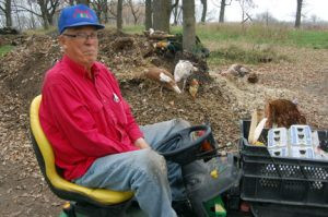 Kornell Erickson of Willmar looking over his flock of turkeys eating from a compost pile. Photo by Scott Thoma