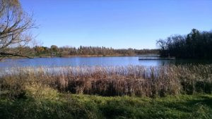 """The """"new"""" lake by Mountain Lake, with its island. Photo by Karen Flaten"""