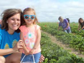 Experience the 'joy of harvesting'