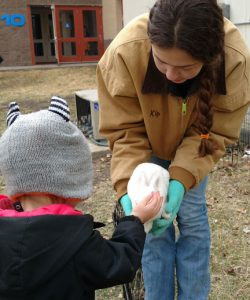 Erickson's Petting Zoo will have several animals on hand during the day.  Contributed photo