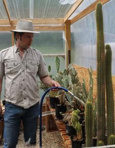 Cacti-do-need-water