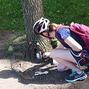 """A girl biked up to the tree and placed a note for the """"little guy"""" earlier this summer.  Photo by Caryl Hunter"""