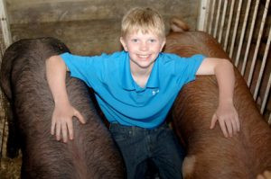 Noah and his two blue ribbon pigs at the Pope County Fair in Glenwood.  Photo by Jim Palmer