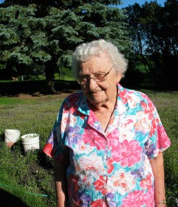 Mary Berlinger works on her garden in Clinton. Berlinger turns 95 this year but continues to remain very active. Photo by Carol Stender