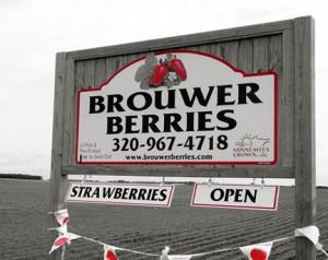 berries-4