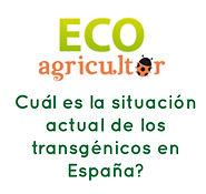 Eco AGRICULTOR habla de Transgénicos
