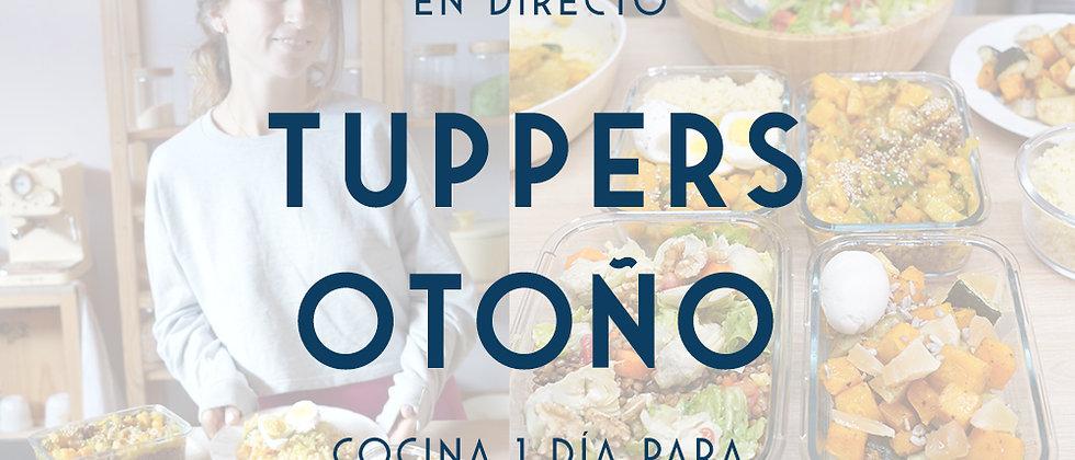 Curso Online Tuppers especial Otoño
