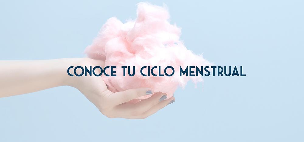 Conoce tu ciclo menstrual by Lemon's Secrets
