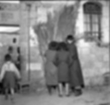 Gathering Schach (Roof Covering for the Sukkah), Jerusalem, 1955