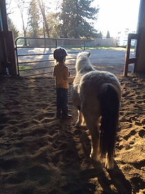 A boy and his pony pal!