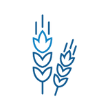 CussonsMedia_Icons_Trans_Ag_1.png