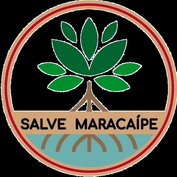 Salve_Maracaípe_edited.png