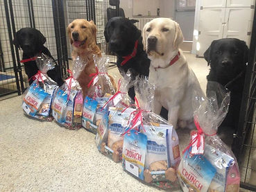 Hero Dogs with canine care packs