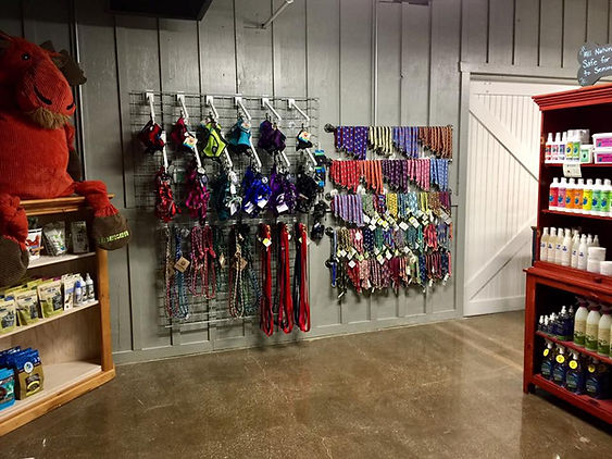 Picture of wall of harnesses and collars
