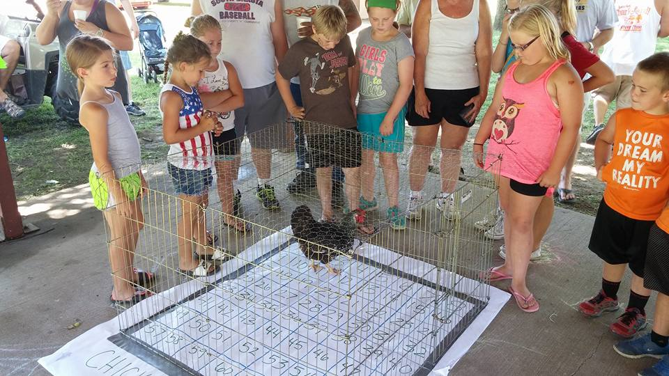 Chicken Coop Bingo