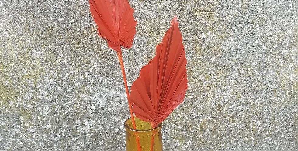Feuille de palmier S rouge