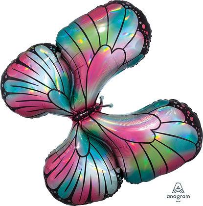 Mariposa Colores