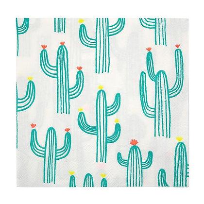 Cactus Servilleta Grande