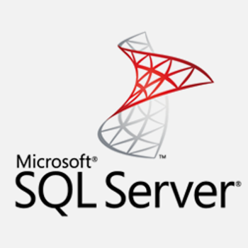 Microsoft SQL Server Integration Services (SSIS) (Online)