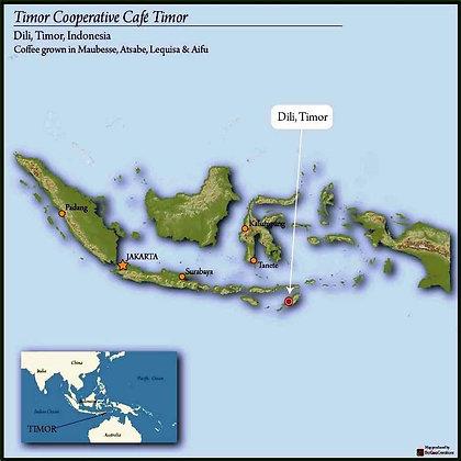 Timor FTO