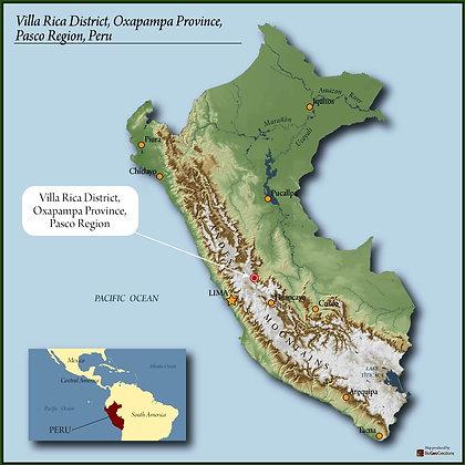 Peru Organic RFA SMBC Villa Rica SHB