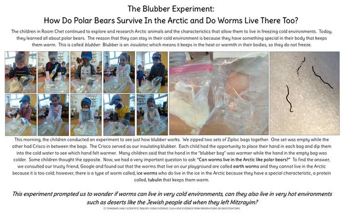 Room Chet's Blubber Experiment