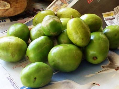 Jamaican Food Stories: School treats of yesteryear.