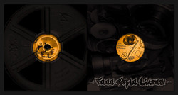 pochette vinyle fsl