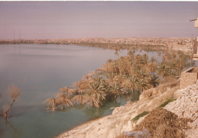 My father went on a road trip with his friends yet again to the Anah area - in this photo you can see drowned Anah with the tops of the Palm trees still on top of the water.      Anah, 1989