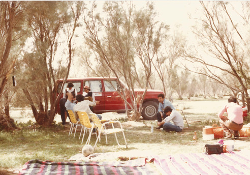 Burjesia park was one of the most common parks that families and friends went for picnics and BBQs there.  Basra, 1985