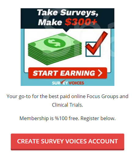 surveyvoices.png