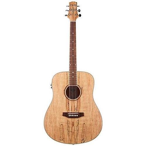 Ashton D26EQ SPM Acoustic Guitar w/ Pickup (Spalted Maple)
