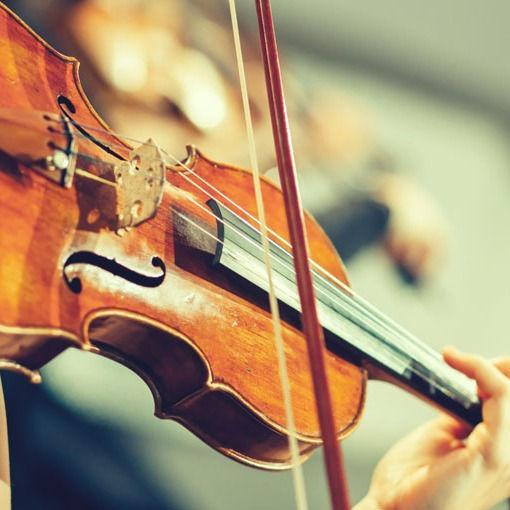 Violin/Viola